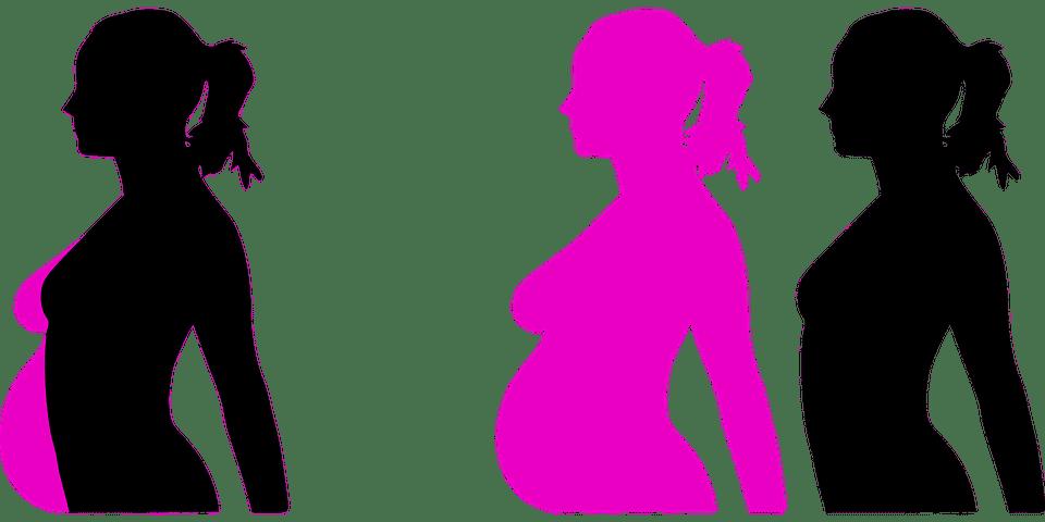 Grossesse et taille des seins